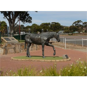 The town was named after the horse Norseman