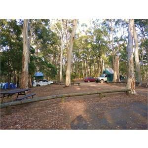 Dawson Springs camping ground
