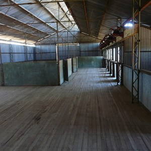 Inside the shearing shed - still in good condition