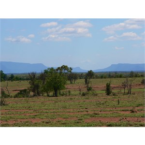 Blackdown Tablelands
