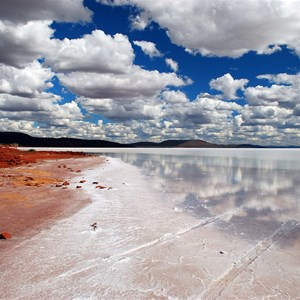 Lake Gairdner shores