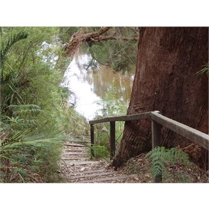 Walpole-Nornalup National Park
