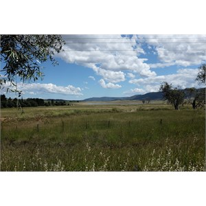 View from Jindabyne Rd 2km west of Berridale