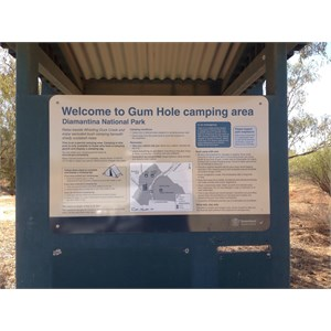 Gum Tree camping area