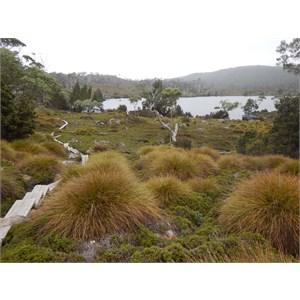 Lake Windermere - Overland Track
