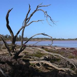 Lake Becking