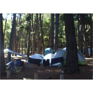 Nanga Campsite 2011