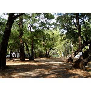 Boat ramp camp area