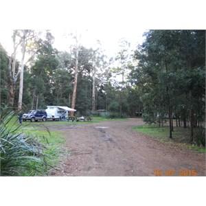 Big Brook Arboretum Campground