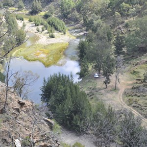 Bridle Track - Mary Flynn Reserve