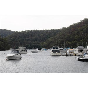 Boats moored at Berowra Waters