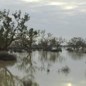 Cooper Creek crossing the Birdsville Track