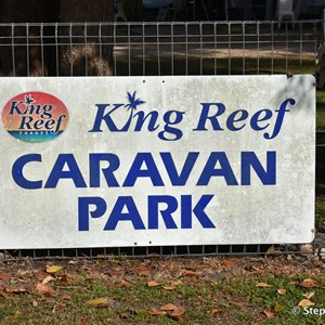 King Reef Van Park