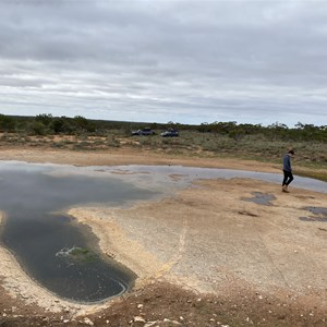 Goog's Track Water Hole