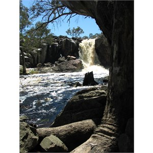 Nigretta Falls on the Wannon River