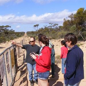 Dingo Fence Googs Track South