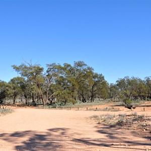 Main Camp Mungo NP