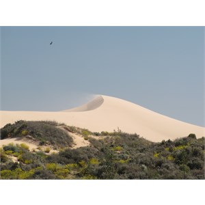 Sandspray at the dune crest