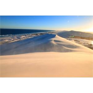 Top of Bilbunya Dunes