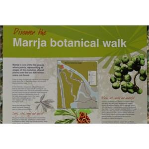 Marrja Botanical Boardwalk