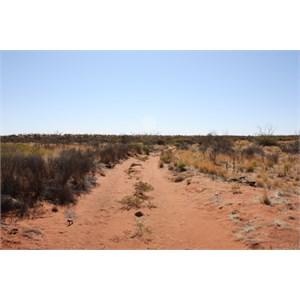 View on Talawana Track