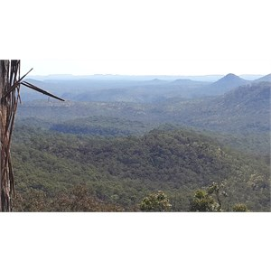 Kenniff Lookout track viewing point