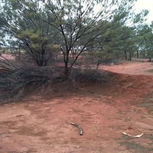 Warri Site