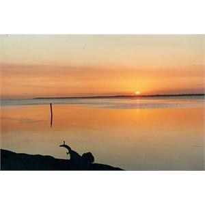 Lake Victoria, Emu Bight