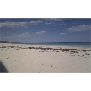 Club Capricorn Beach