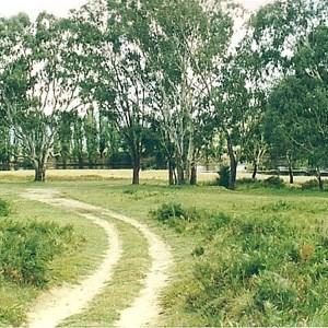 Burrowye Reserve
