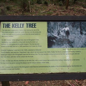 Kelly Tree