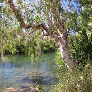 The refreshing creek