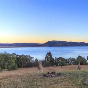 Lake Glenbawn campsite