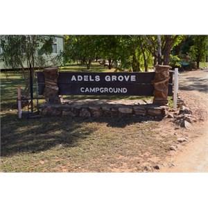 Adels Grove