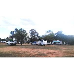 Part of the parking area at Duaringa camping area