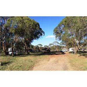 Ebor Free Camp area