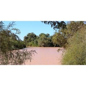 Eyre Creek at Cutta Burra Crossing
