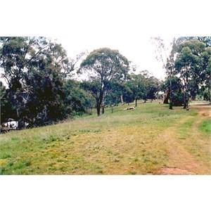 Hwy park