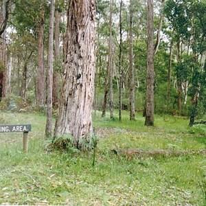 Hiscocks camp ground