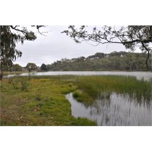 Burraga Dam backwater