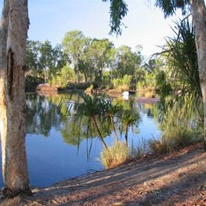 Manning Creek at campsite
