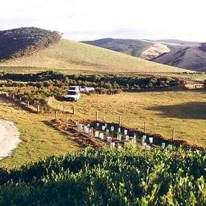 main camp grounds