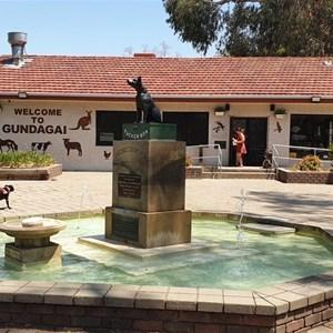 The Dog on the Tuckerbox statue and the souvenir shop near Gundagai