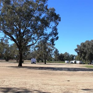 View of part of the Barcoo River Camping Area