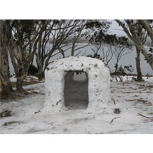 Shelter with ice window