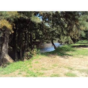 Jounama Creek Camp Area