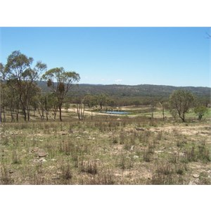Glendons Camping ground, buffer zone