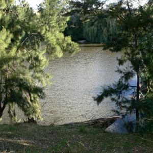Macquarie River near Ponto falls
