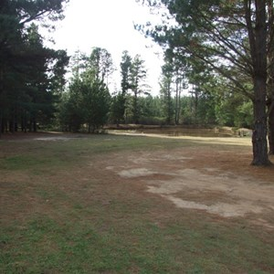 Dalys Clearing Campground, Belanglo State Forest