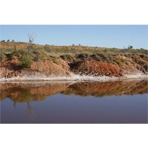 Gravel scrape dam - Anna Plains Track